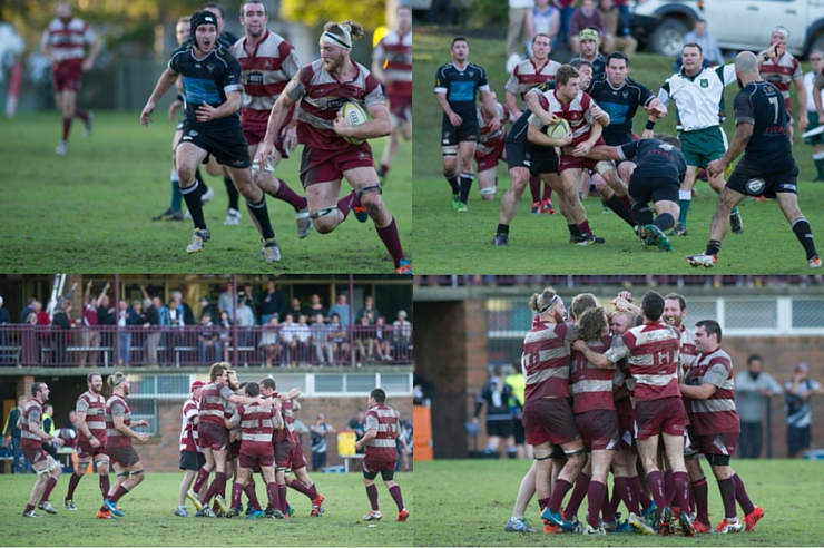 newcastle-rugby2