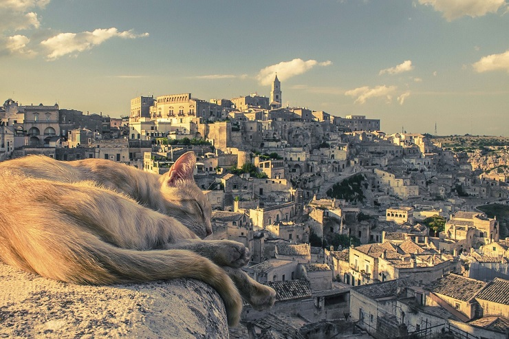 matera-before-you-go