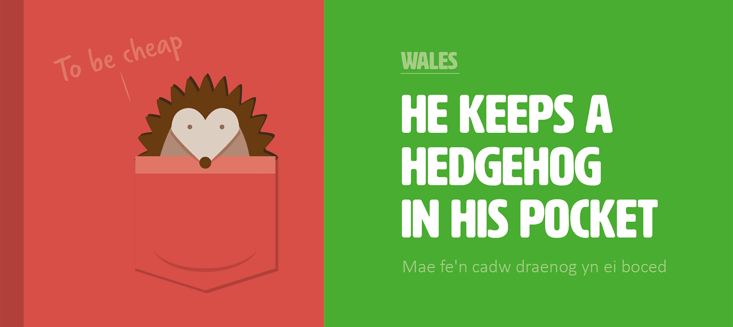 cost-in-translation-hedgehog